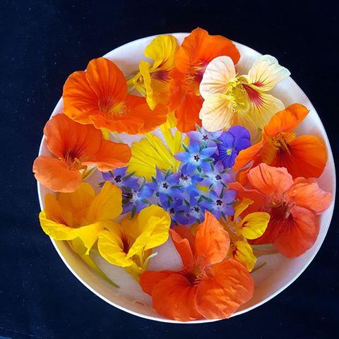 Flores tomadas del FB de @Floresgourmetcr